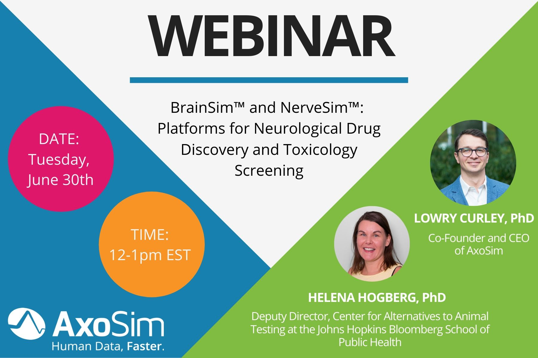 NerveSim™ and BrainSim™: Platforms for Neurological Drug Discovery and Toxicology Featured Image